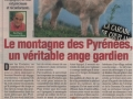 PATOU_ANGE_GARDIEN