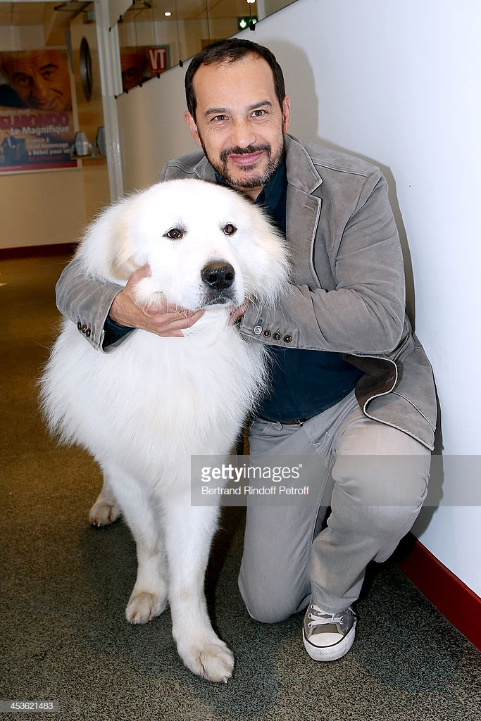 PARIS, FRANCE - DECEMBER 04:  Actor who played Sebastien in the serie 'Belle et Sebastien' from 1965 Mehdi El Glaoui with the dog Berger present the movie 'Belle et Sebastien' during the 'Vivement Dimanche' French TV Show at Pavillon Gabriel on December 4, 2013 in Paris, France.  (Photo by Bertrand Rindoff Petroff/Getty Images)