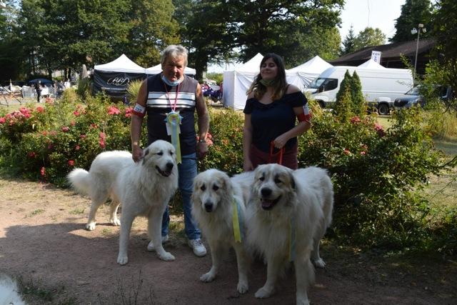 Exposition Canine Nationale, Dompierre-sur-Besbre 13 Septembre 2020